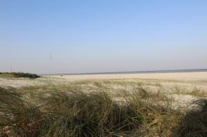 Am nahegelegenen Sandstrand